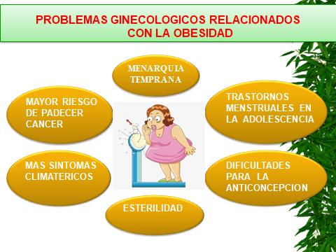 OBESIDAD. PROBLEMAS GINECOLOGICOS.