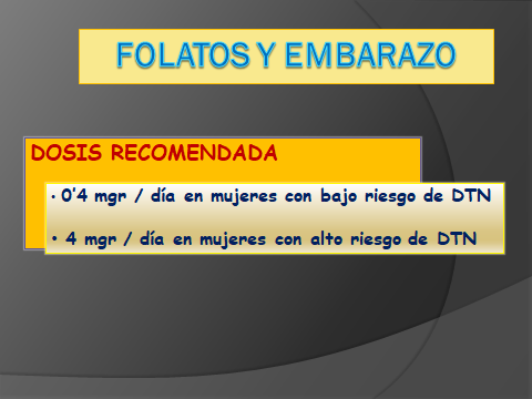 FOLATOS Y EMBARAZO.7